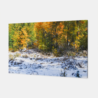 Thumbnail image of Fall color with Snow, Live Heroes