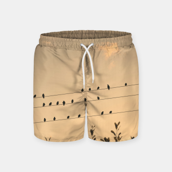 Miniatur BIrds on wires Swim Shorts, Live Heroes