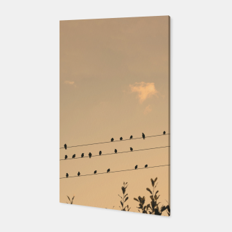 Miniatur BIrds on wires Canvas, Live Heroes