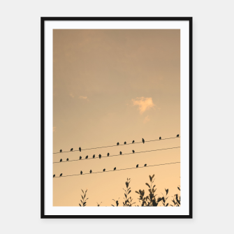 BIrds on wires Framed poster Bild der Miniatur