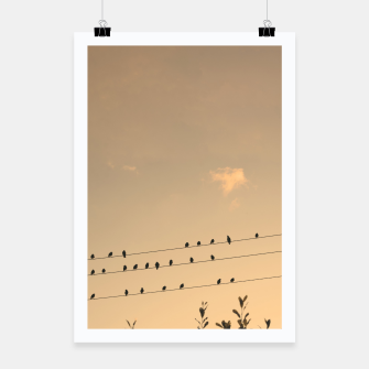 Miniatur BIrds on wires Poster, Live Heroes