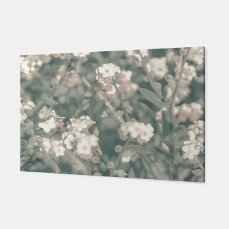 Thumbnail image of Beauty Floral Scene Photo Canvas, Live Heroes