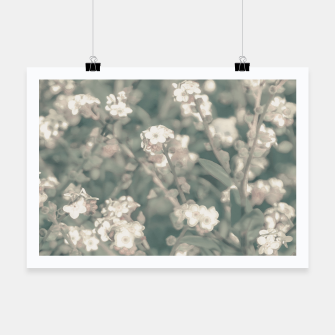 Thumbnail image of Beauty Floral Scene Photo Poster, Live Heroes