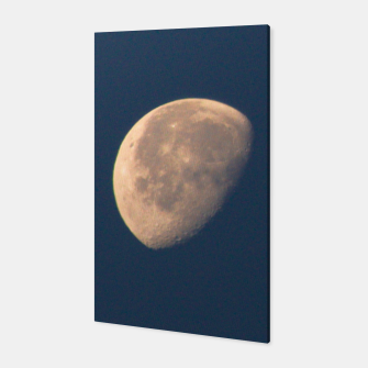Miniature de image de moon Canvas, Live Heroes
