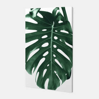 Monstera Delight #4 #tropical #decor #art Canvas miniature