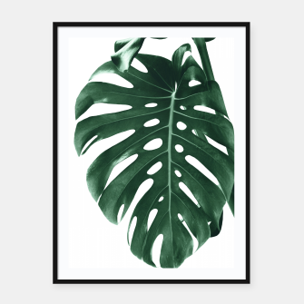 Monstera Delight #4 #tropical #decor #art Plakat mit rahmen miniature