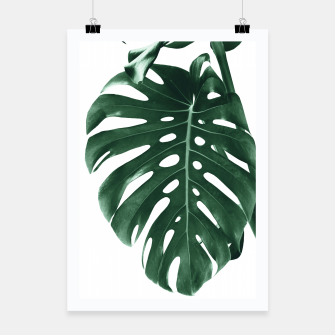 Miniaturka Monstera Delight #4 #tropical #decor #art Plakat, Live Heroes