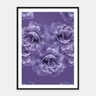 Thumbnail image of Ultra Violet Peony Flower Bouquet #1 #floral #decor #art Plakat mit rahmen, Live Heroes