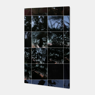 Thumbnail image of Squares in nature, Live Heroes