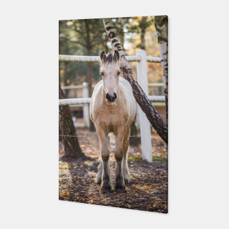 Thumbnail image of Autumn horse Canvas, Live Heroes
