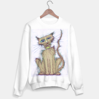Thumbnail image of Smelly cat Sweater regular, Live Heroes
