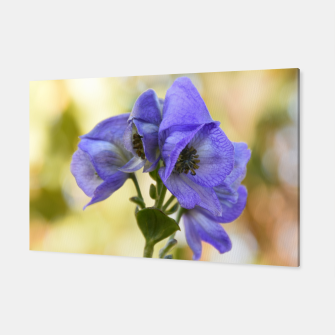 Thumbnail image of autumn blue flower Canvas, Live Heroes