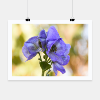 Thumbnail image of autumn blue flower Plakat, Live Heroes