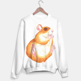 Miniatur rat eating treat sweater, Live Heroes