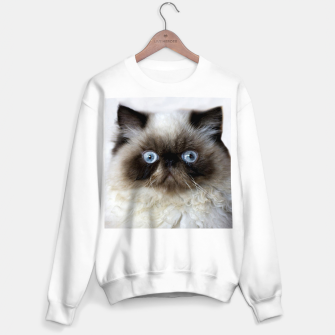 Thumbnail image of Funny Cat Sweater regular, Live Heroes