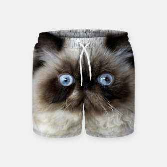Thumbnail image of Funny Cat Swim Shorts, Live Heroes