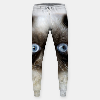 Thumbnail image of Funny Cat Sweatpants, Live Heroes