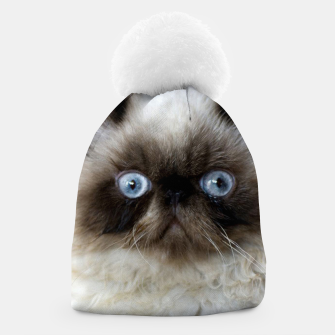 Thumbnail image of Funny Cat Beanie, Live Heroes