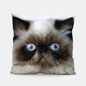 Thumbnail image of Funny Cat Pillow, Live Heroes
