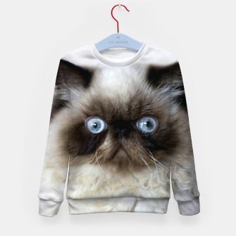 Thumbnail image of Funny Cat Kid's sweater, Live Heroes