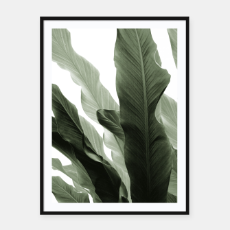 Miniaturka Banana Leaves Jungle #7 #tropical #decor #art Plakat mit rahmen, Live Heroes