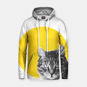 Thumbnail image of Cat stare Hoodie, Live Heroes