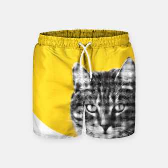 Cat stare Swim Shorts Bild der Miniatur