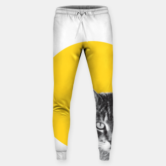 Cat stare Sweatpants Bild der Miniatur