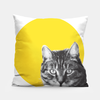 Cat stare Pillow Bild der Miniatur