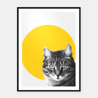 Miniatur Cat stare Framed poster, Live Heroes