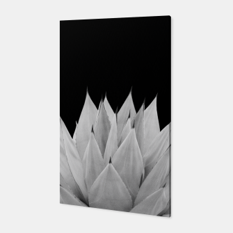 Thumbnail image of Agave Black & White Summer Night Vibes #1 #tropical #decor #art Canvas, Live Heroes