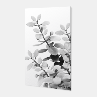 Thumbnail image of Eucalyptus Leaves Black & White Vibes #1 #foliage #decor #art Canvas, Live Heroes