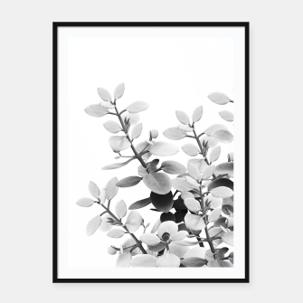Thumbnail image of Eucalyptus Leaves Black & White Vibes #1 #foliage #decor #art Plakat mit rahmen, Live Heroes