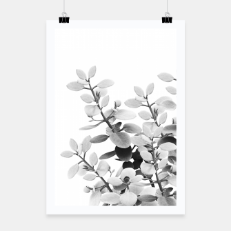 Thumbnail image of Eucalyptus Leaves Black & White Vibes #1 #foliage #decor #art Plakat, Live Heroes