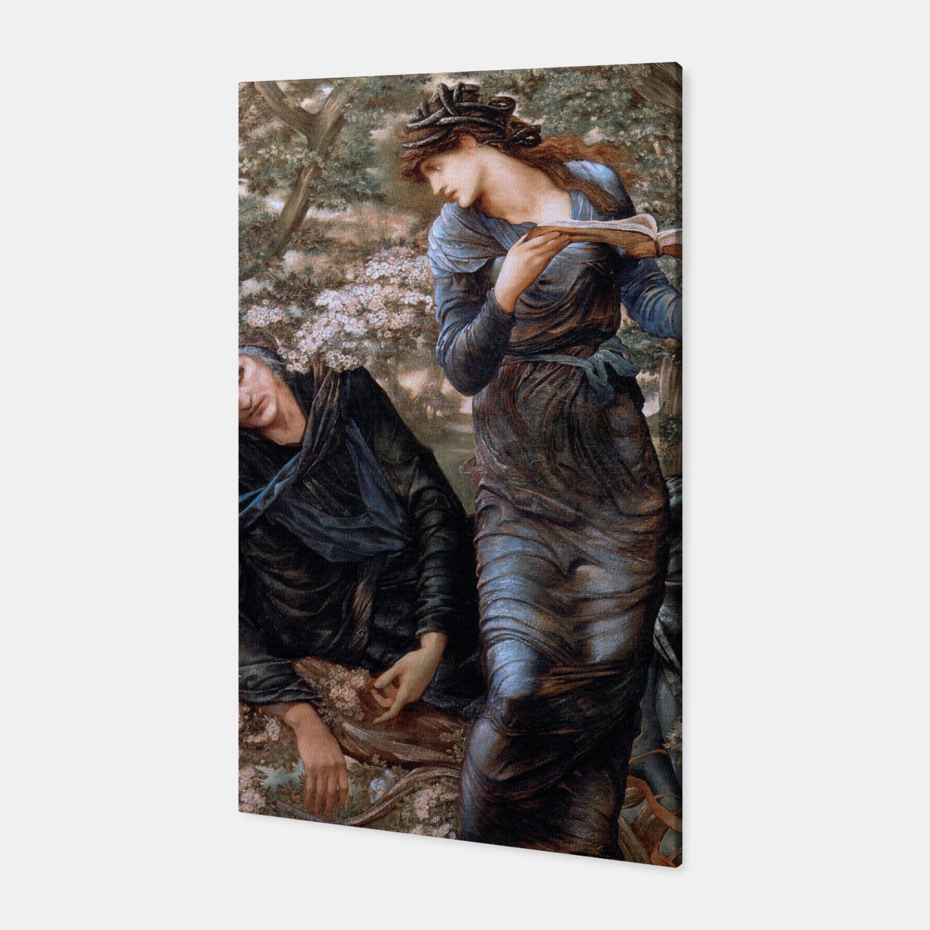 Image of The Beguiling of Merlin by Edward Burne-Jones Canvas - Live Heroes