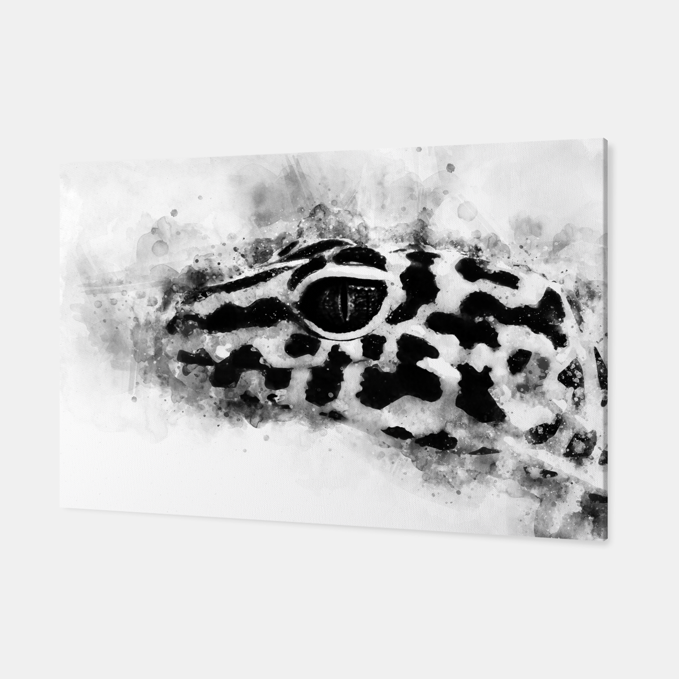 Image of Leopard Gecko p2bw Canvas - Live Heroes
