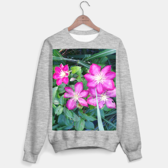 Thumbnail image of pink clematis Bluza standard, Live Heroes