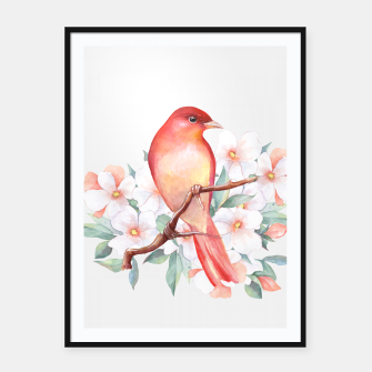 Thumbnail image of Red bird on branch Framed poster, Live Heroes
