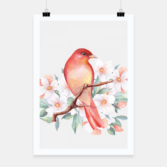 Thumbnail image of Red bird on branch Poster, Live Heroes