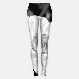 Thumbnail image of White blossoming chrysanth, black and white flower photography Leggings, Live Heroes