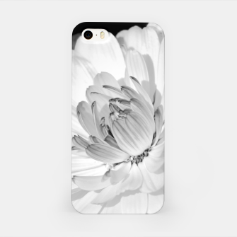 Miniatur White blossoming chrysanth, black and white flower photography iPhone Case, Live Heroes