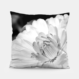 Miniatur White blossoming chrysanth, black and white flower photography Pillow, Live Heroes