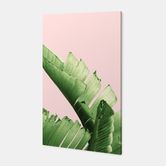 Blush Banana Leaves Dream #12 #tropical #decor #art Canvas obraz miniatury