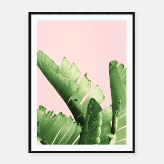 Blush Banana Leaves Dream #12 #tropical #decor #art Plakat mit rahmen obraz miniatury
