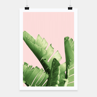 Blush Banana Leaves Dream #12 #tropical #decor #art Plakat obraz miniatury