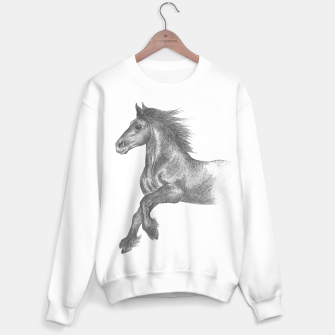 Thumbnail image of Fell pony cantering sweater, Live Heroes