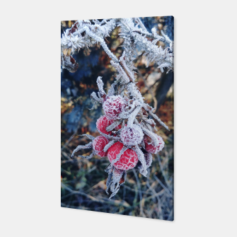frozen rose Canvas miniature