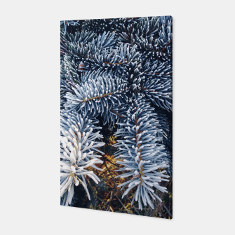 Thumbnail image of frozen spruce Canvas, Live Heroes