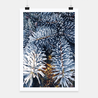 Thumbnail image of frozen spruce Plakat, Live Heroes