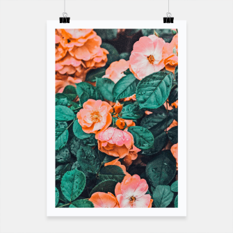 Thumbnail image of Vintage Blossom II Poster, Live Heroes